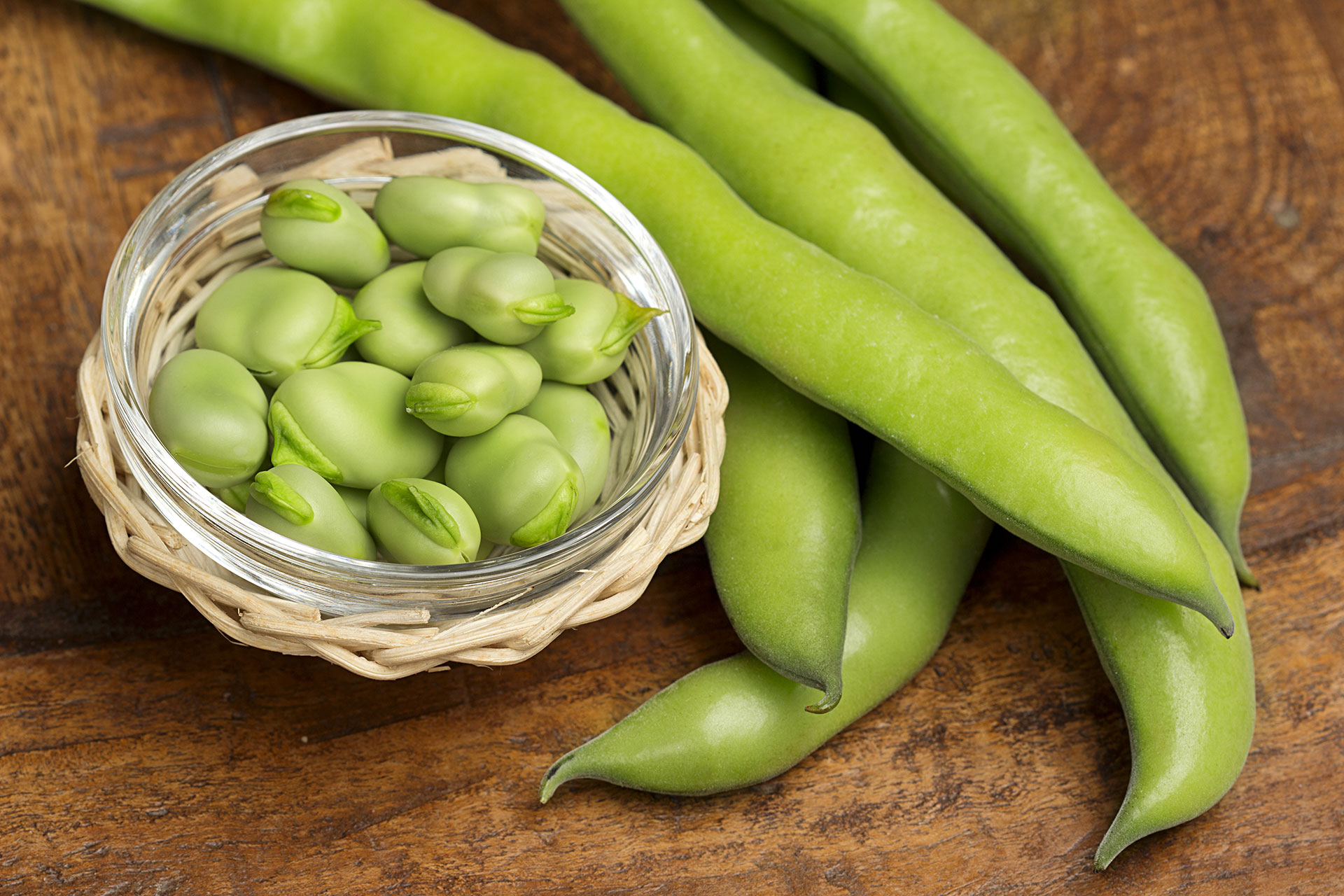 pick-your-own-fava-beans-01